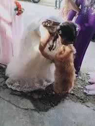 sposa-matrimonio-cane