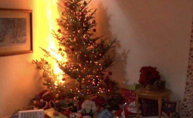 Torino-va-a-fuoco-albero-di-Natale