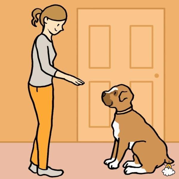 cane-ragazza