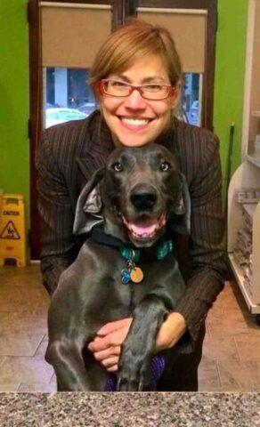 Alex-il-cane-costretto-a-vivere-da-randagio-per-molto-tempo 1