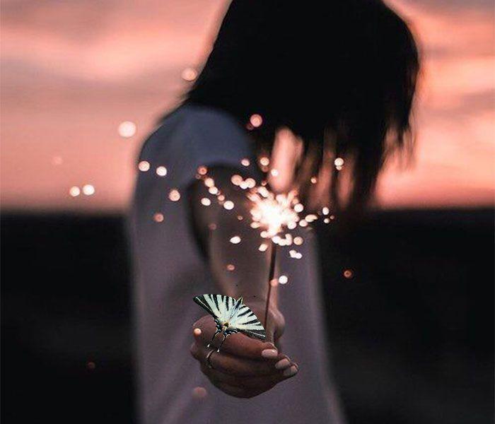 farfalla-4
