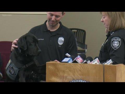 Tagg-il-nuovo-cane-poliziotto 2