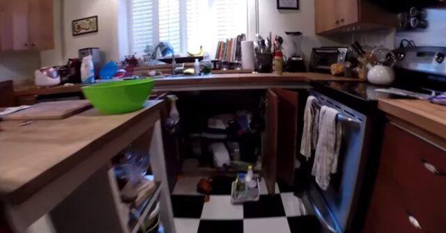 il-cagnolino-nascosto-nel-secchio-della-spazzatura-dopo-che-ha-distrutto-tutto