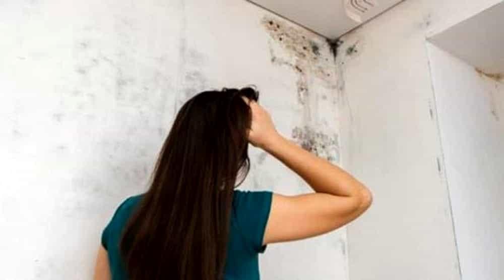 Come togliere la muffa dal muro
