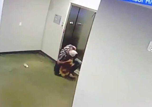 ragazzo-salva-la-vita-del-cagnolino 1