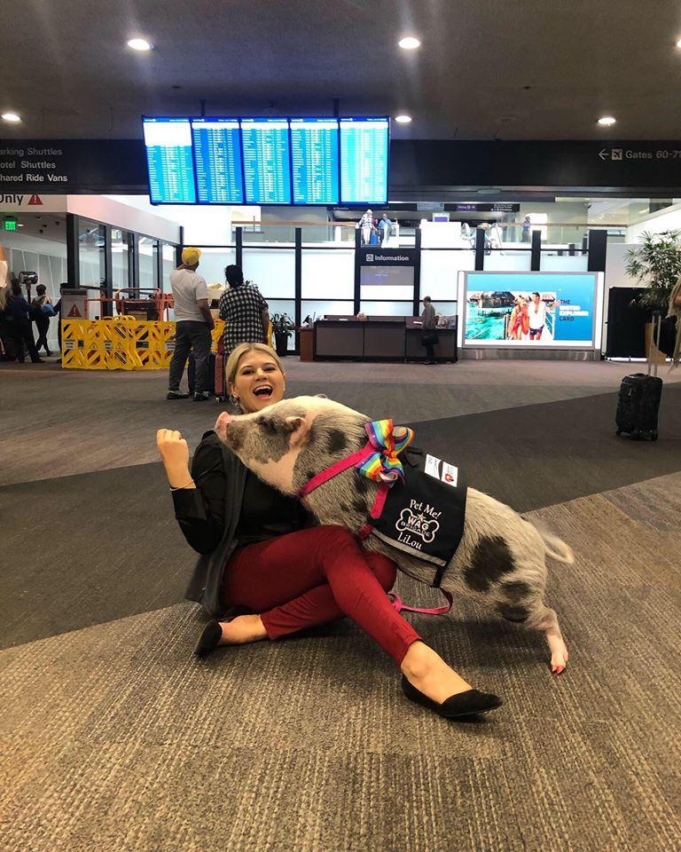 Si chiama Lilou ed è il maialino da pet therapy più famoso di San Francisco