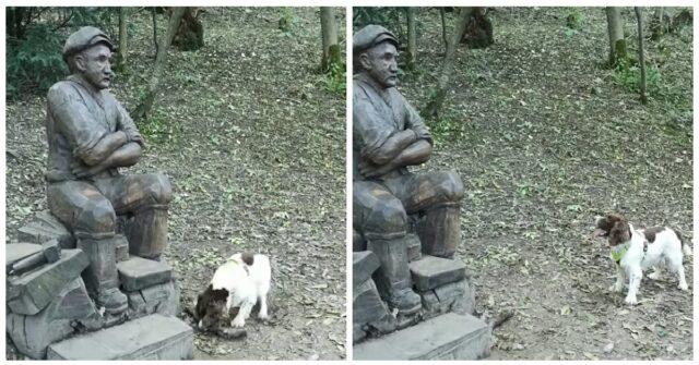 Chester-il-cane-che-vuole-giocare-con-la-statua-ed-ha-lasciato-a-bocca-aperta-tutti