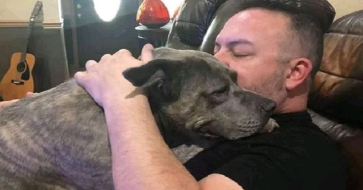 Salva due pitbull dal canile e loro gli salvano la vita durante una rapina.