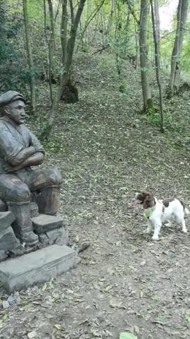 Chester-il-cane-che-vuole-giocare-con-la-statua 1
