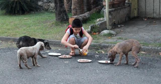 l'amore-di-Ken-per-gli-animali 1