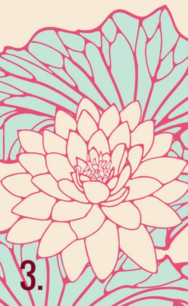 fiori-giapponesi-3