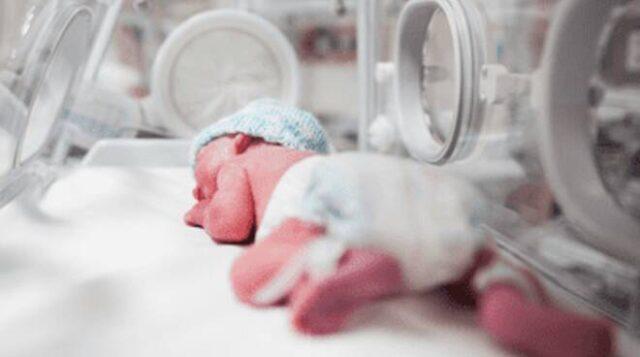 Campobasso-ragazza-partorisce-nel-bagno-della-scuola 1