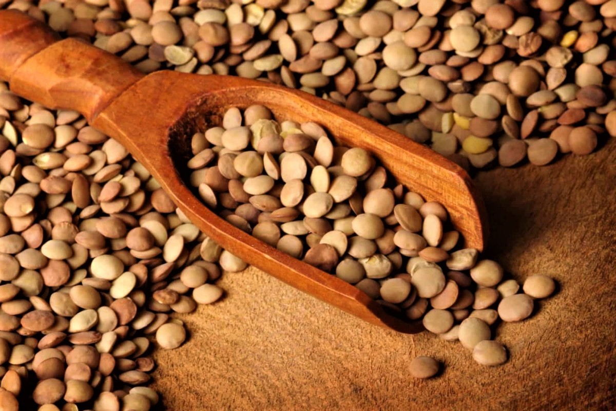 5 motivi per cui dovresti mangiare più lenticchie