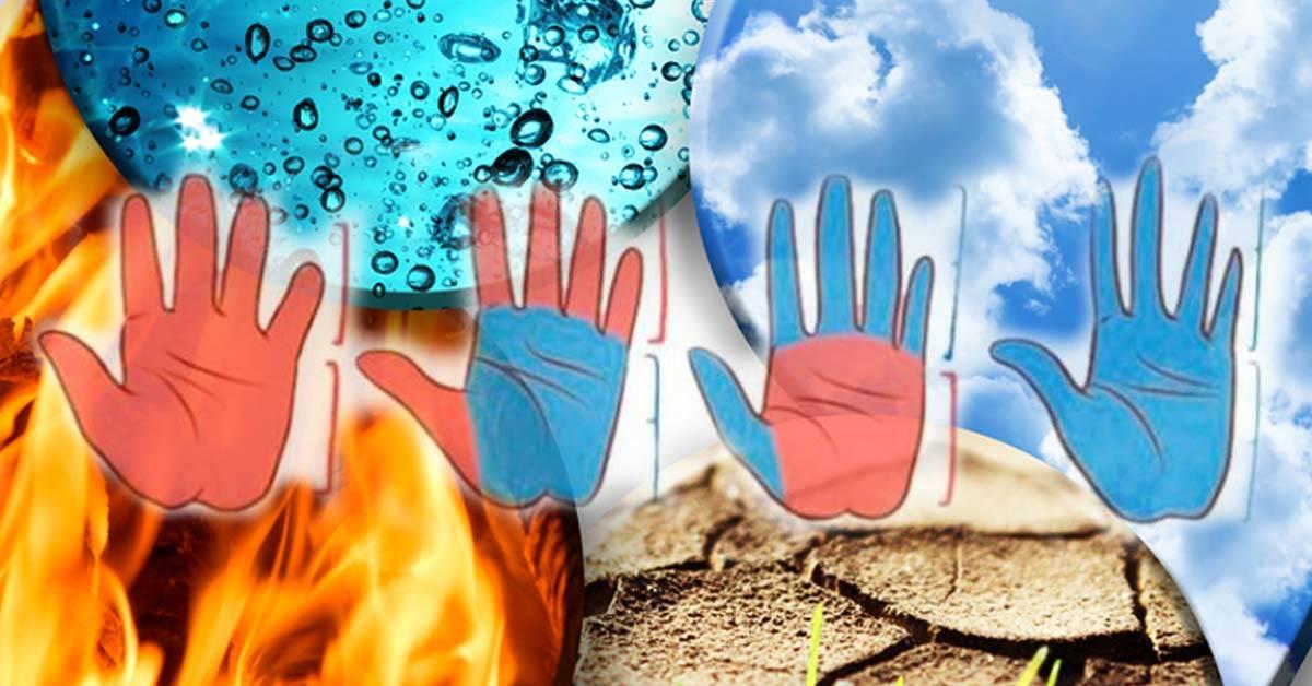 Come sei in base alla forma della tua mano e ai 4 elementi