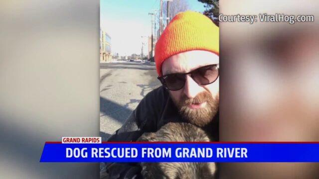 Austin-salva-la-vita-del-cane-caduto-nel-lago 2