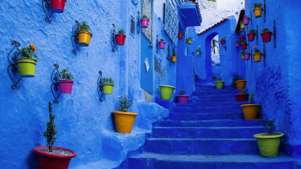 muri-blue