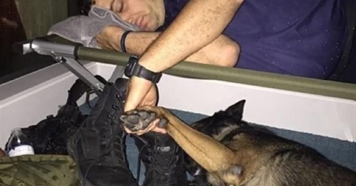 Poliziotto si addormenta con la zampa del suo fedele amico a quattro zampe dopo una lunga giornata