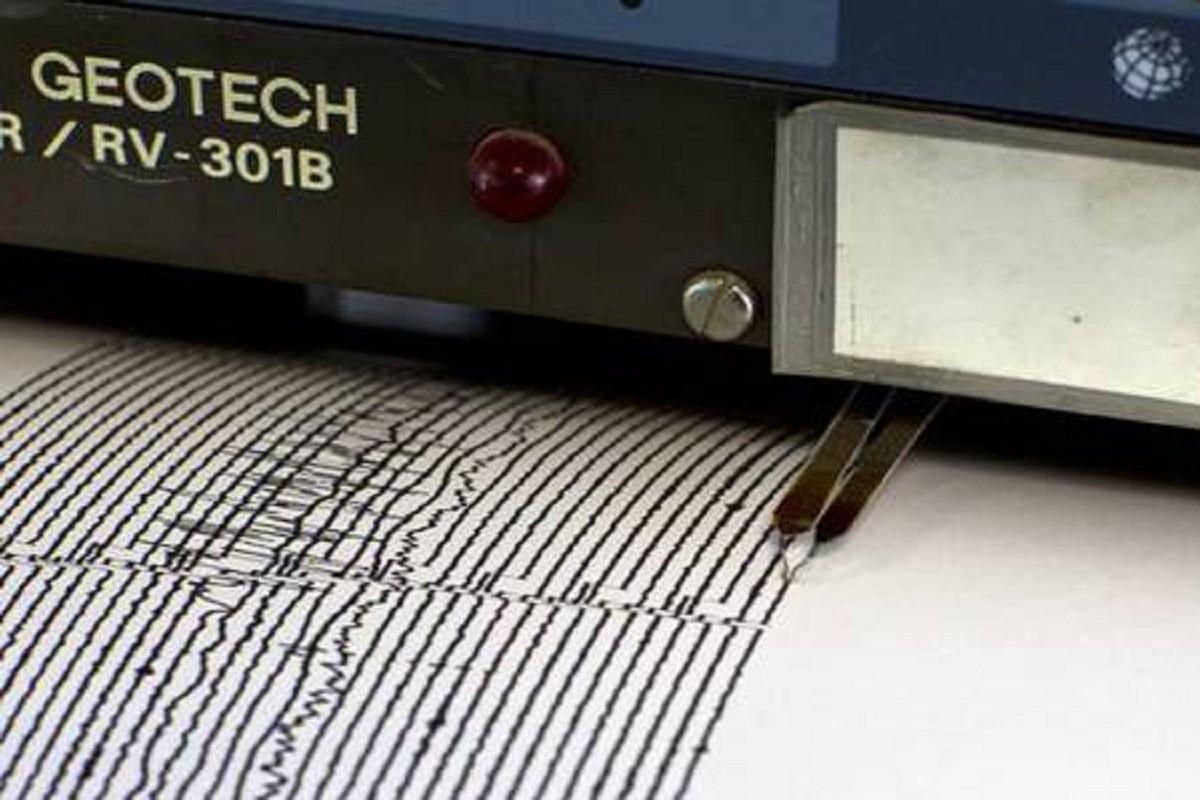 sismografo-ansa