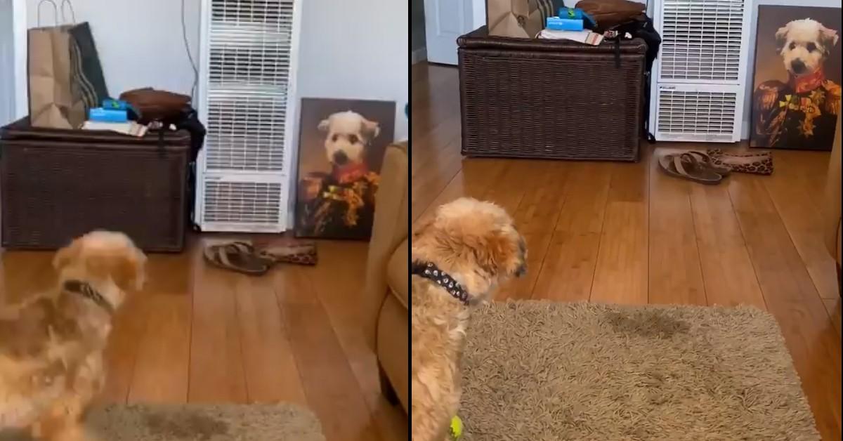 Cane che guarda il suo ritratto