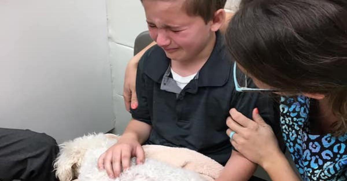 Bambino voleva stare vicino al cane morente
