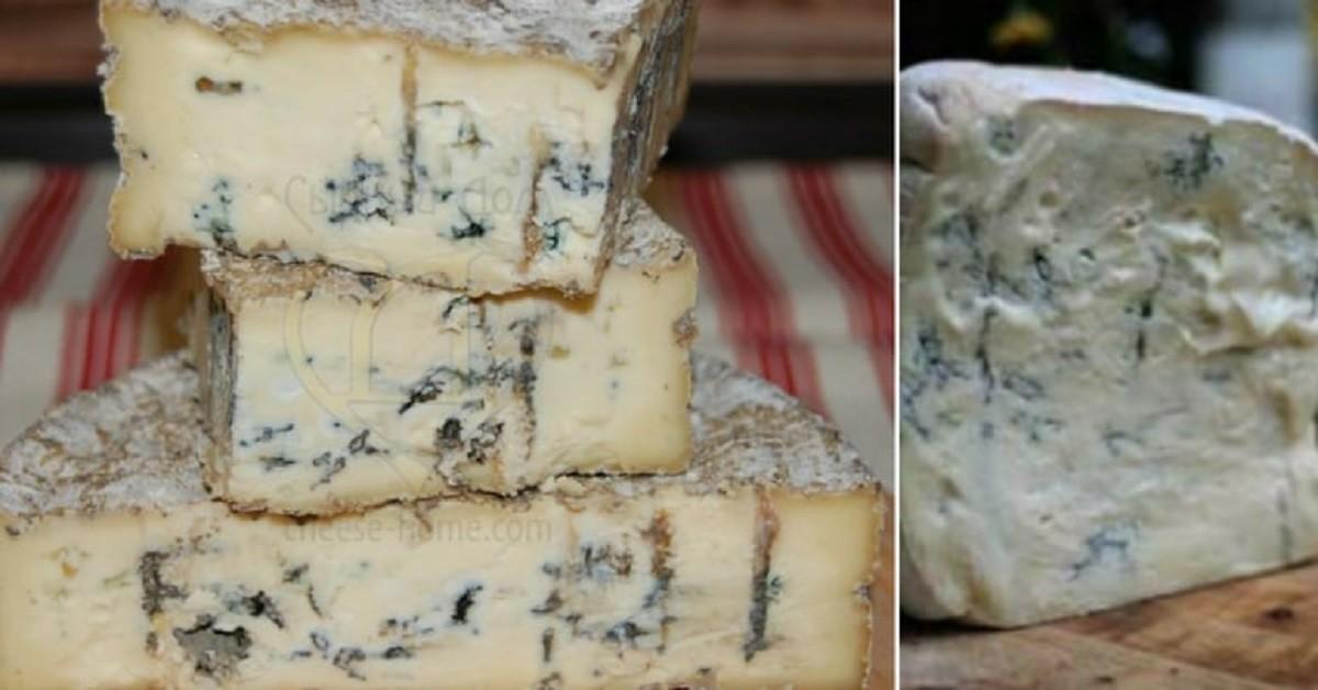 Cosa succede se si mangia formaggio ammuffito