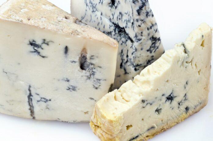 pezzo di formaggio ammuffito