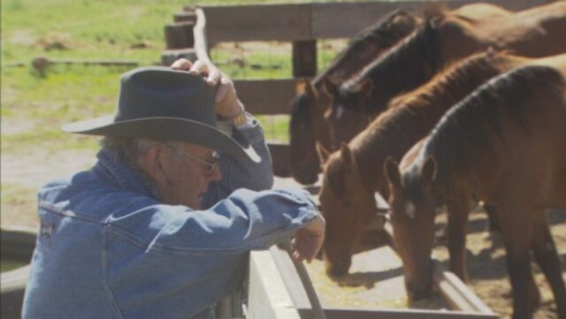 L'amore di Dayton per i cavalli