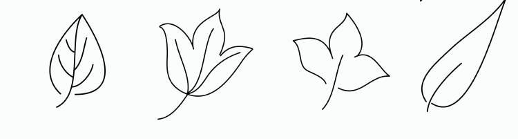 piante-disegni