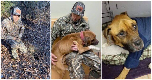 Il-salvataggio-di-un-cagnolino-chiamato-Buck