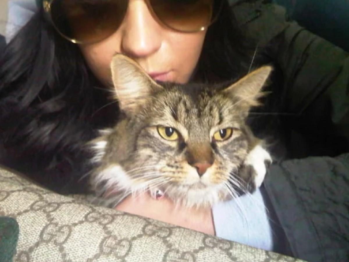 Kitty Purry e Katy Perry