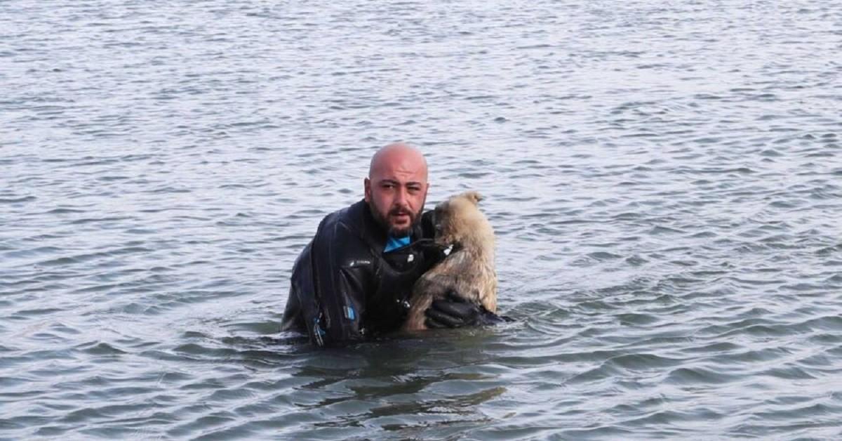 Poliziotto turco e cane