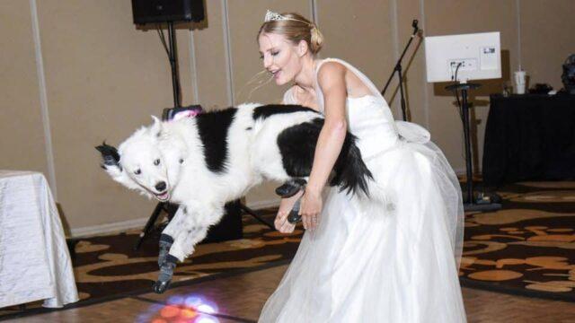 Il-ballo-al-matrimonio-di-Sara-ed-Hero 1