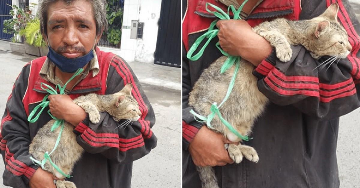 Senzatetto costretto ad abbandonare un gatto continua ad accudirlo