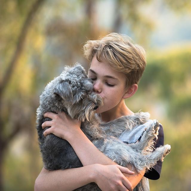 Bambino abbraccia il suo cane