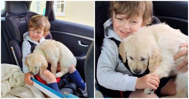 Un cane in regalo per un bambino autistico