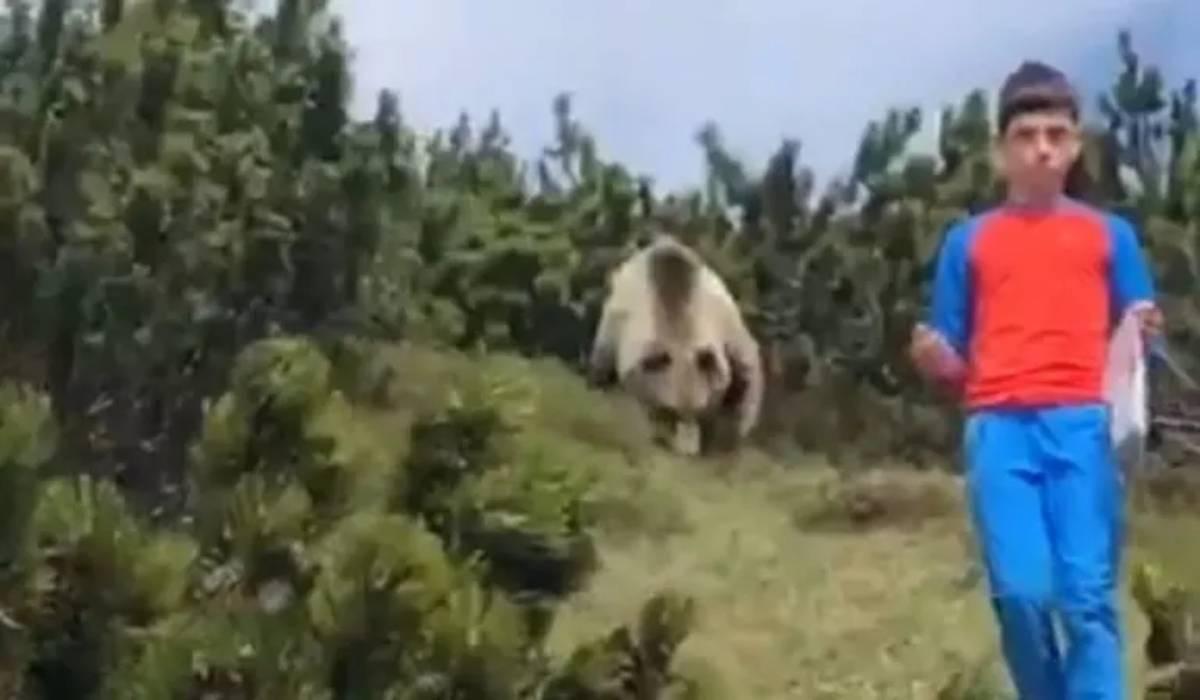orso e bimbo
