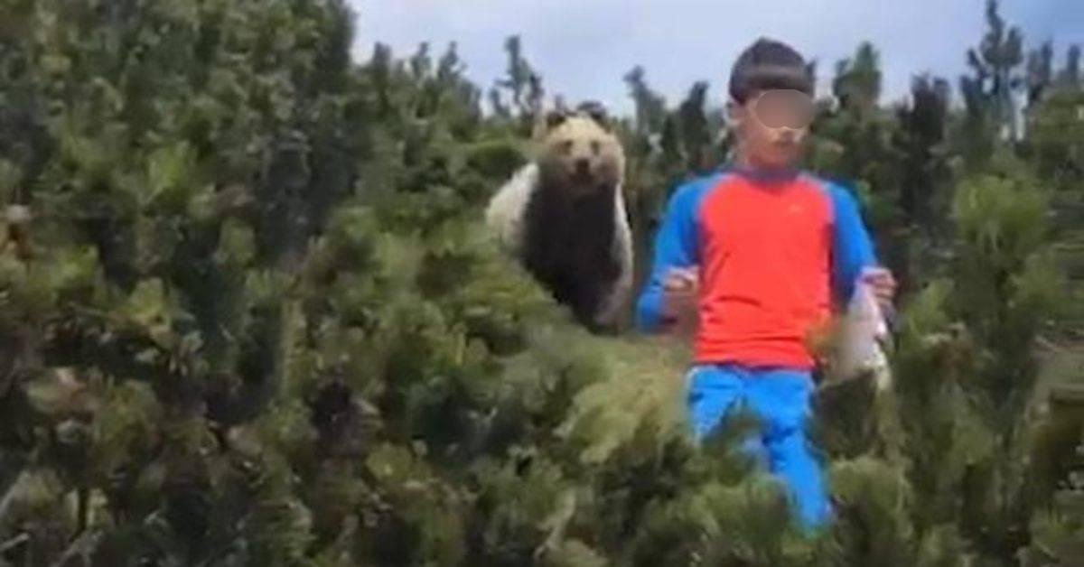 Alessandro bimbo e orso