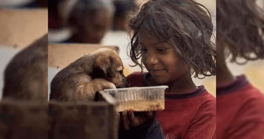 Bambina da dà mangiare al cane abbandonato