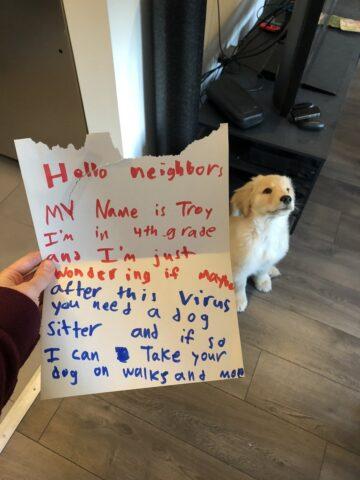 bimbo scrive lettera per il cane