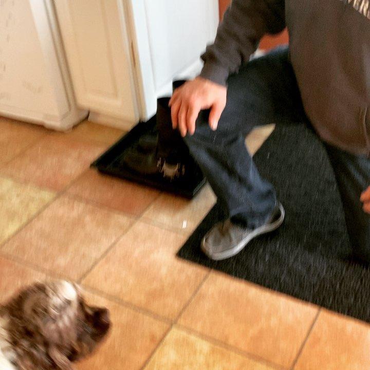 Il cane in attesa di un abbraccio