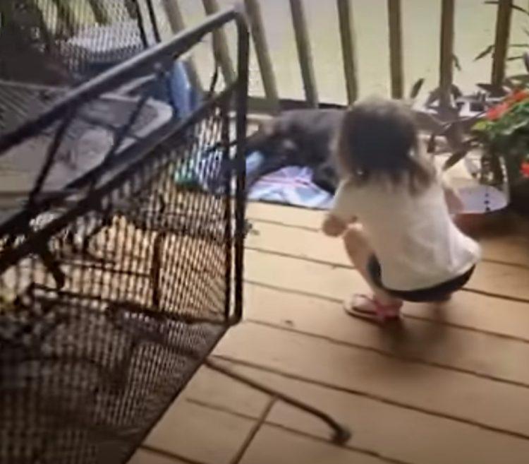 Coppia aiuta Betsy