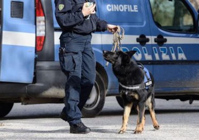 cane poliziotto fiuta marijuana