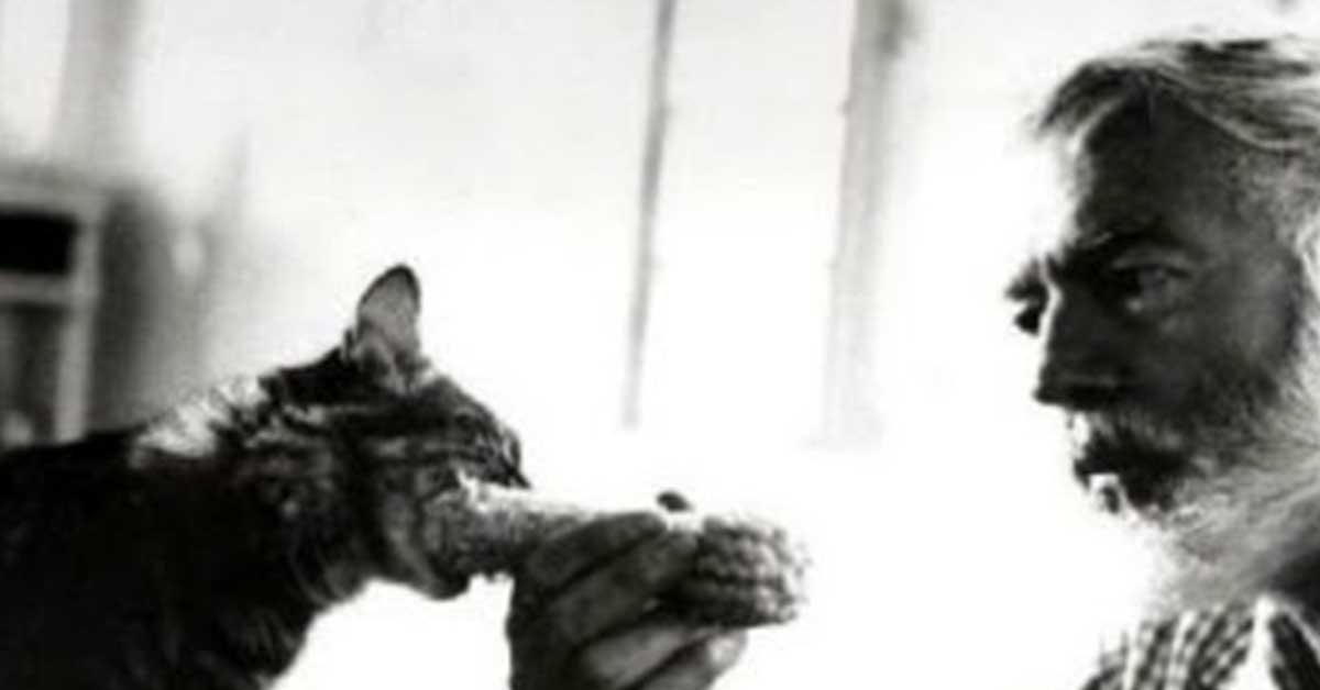 gatti hemingway