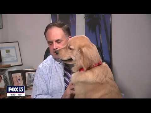 Esperto meteo e il suo cane