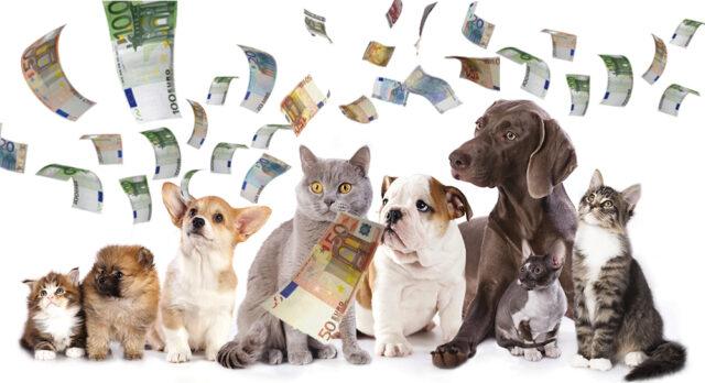 Lav e il bonus per cani e gatti