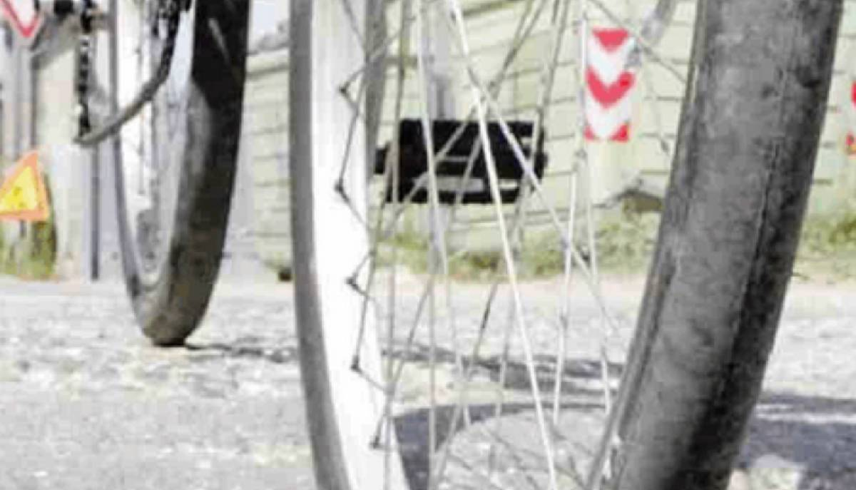 ruota di bici