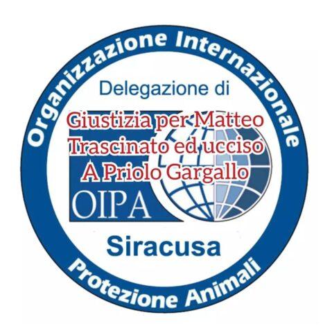 Cane trascinato a Priolo Gargallo: minacce contro le avvocatesse della difesa