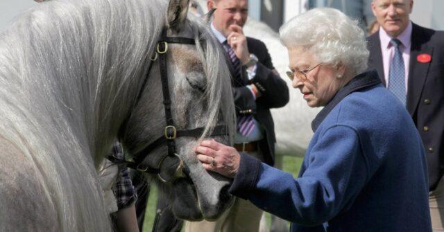 Regina Elisabetta a cavallo