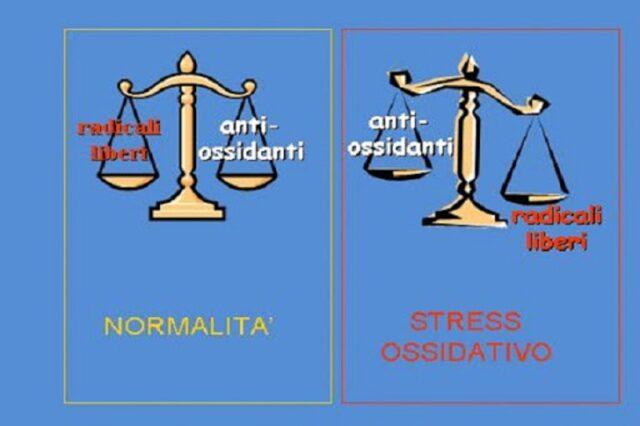 Cellula stressata e cellula non stressata