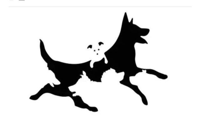 Il test per l'età mentale: quanti cani vedi?